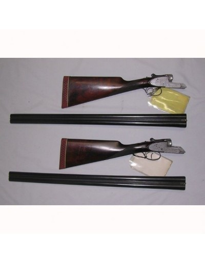 Escopetas Aya 53